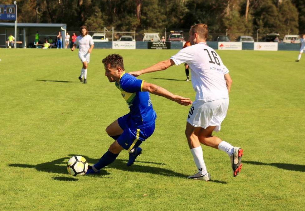 Devonport defeat Glenorchy 4-0 in NPL Tasmania clash at Valley Road